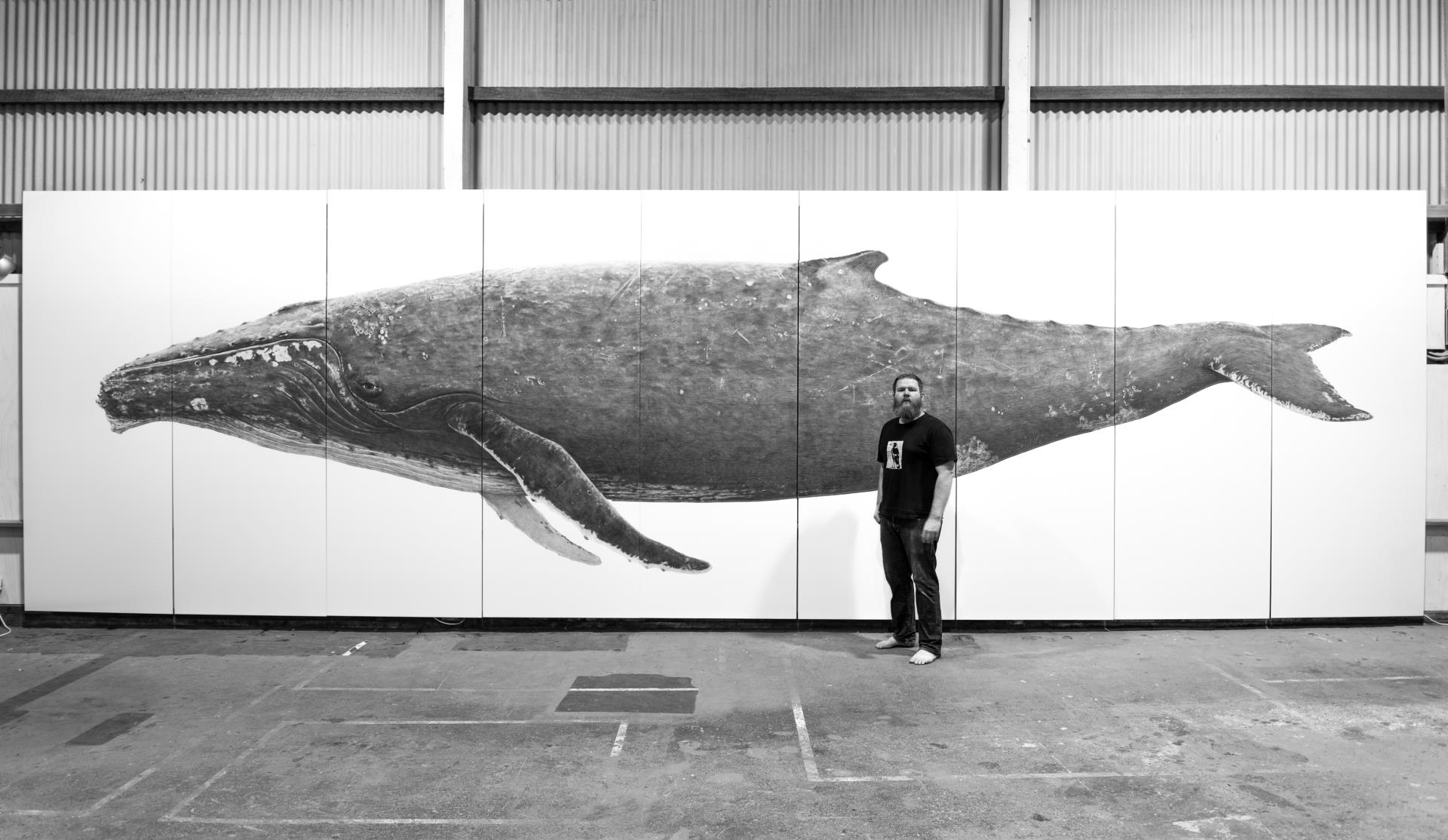 Great White Shark art piece to involve community