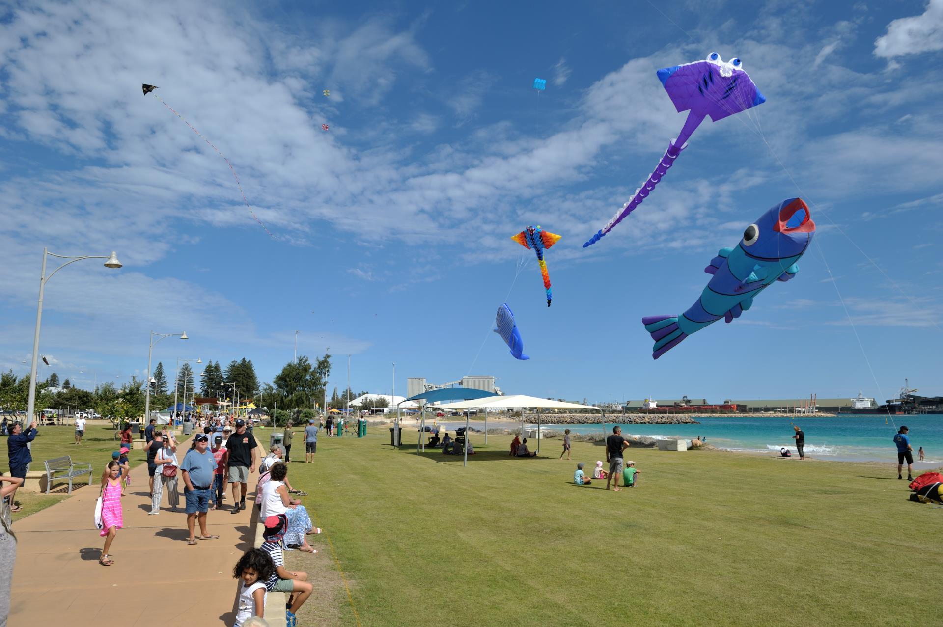 Giant kites to WoW crowds at Festival